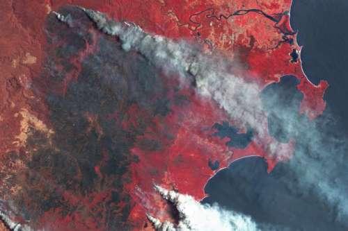 cambio climático megaincendios bosques quemados